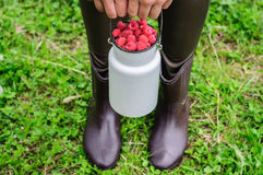 White can with fresh raspberry. On old wooden background with hands and legs of woman Stock Photos