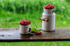 White can and mug with fresh raspberry on rain. White enamel can and mug with fresh raspberry on rain Stock Photography