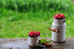 White can and mug with fresh raspberry on rain. White enamel can and mug with fresh raspberry on rain Royalty Free Stock Images