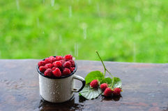 White can and mug with fresh raspberry on rain. White enamel can and mug with fresh raspberry on rain Stock Image