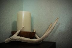 White candle and Antlers stock images