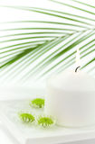 White candle and floating flowers Stock Image