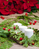 White candles on Christmas arrangement Stock Images