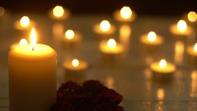 White candles lights romance with rose.  stock video