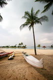 White canoe on tropical beach. A white out rigger canoe under a coconut palm tree on the clean sandy beach of tropical Singapore.  Taken on Sentosa, the popular Royalty Free Stock Photo
