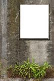 White canvas frames Royalty Free Stock Image