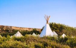 White canvas teepees or wigwams camped in a field stock image
