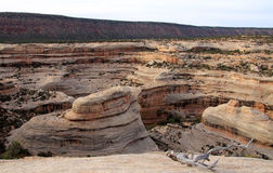 White canyon Stock Image