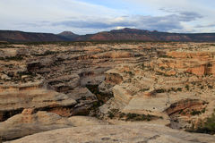 White canyon Stock Photo