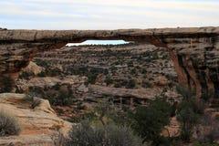 White canyon Stock Photography