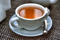 White cap of tea Stock Image