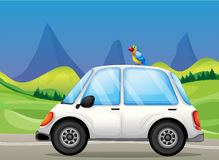 A white car with a bird near the hills Royalty Free Stock Images