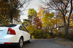 White car at cottage in the autumn forest Royalty Free Stock Photography