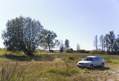 White car in the country. A white car in the country, meadow and some trees Stock Photography