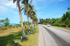 White car at road with palms. South Pacific, Tonga Royalty Free Stock Image
