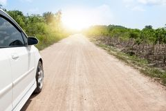 White car on soil road. White car on soil road on day time with cassava tree on side road Royalty Free Stock Images