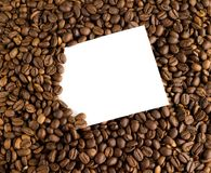 Coffee beans. White card on the background of coffee beans. White card and coffee beans Stock Image