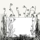 White card floral sketch. Background Royalty Free Stock Photo