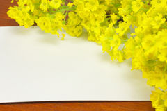 White card with flowers Royalty Free Stock Images