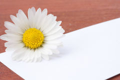 White card with flowers Stock Photo