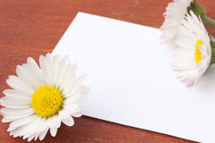 White card with flowers Stock Images