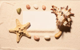 White card in frame of starfish, seashell, stones on sand Stock Photo