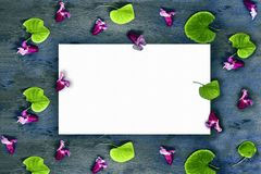 White card on a pattern of pink flowers and round green leaves on a gray aged textured wooden background. Place for text. Stock Images