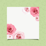White card with pink roses. Vector eps-10. Stock Images