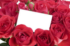 White card in roses Royalty Free Stock Image