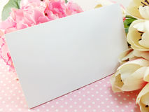 White card and tulip artificial flower with pink background Royalty Free Stock Image