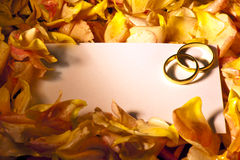 White card with wedding rings Royalty Free Stock Photo