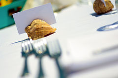 White cardboard stuck in a sea shell Royalty Free Stock Photography