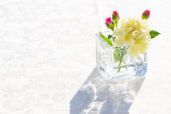 White carnation flowers in the tranparent glass Royalty Free Stock Photo