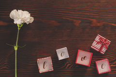 White carnation and gift boxes Stock Photos