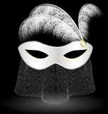 white carnival half-mask and feathers Stock Image