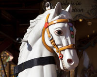 White Carousel Horse Head with Gold Bridle. White carousel horse with riding handles wearing gold bridle inset with red circles and colorful trim Stock Photo