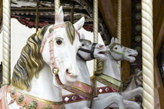White carousel horses Stock Photography