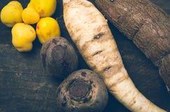 White carrot, sweet potato and potatoes displayed Stock Photos
