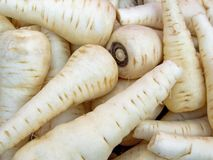 White carrots Stock Photos