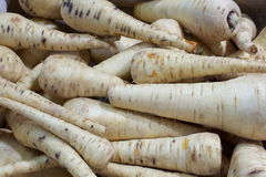 White carrots 2 Stock Photography