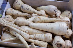 White carrots. A box of white carrots, an almost forgotten vegetable. ecological produce Stock Photo