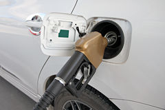 White cars are fuel filler. Stock Images