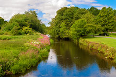 White Cart Water in Pollok Country Park, Glasgow, Scotland. Picturesque view of a narrow river in Scotland Royalty Free Stock Photos