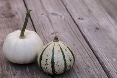 White Casper pumpkin next to green and white gourd Royalty Free Stock Image
