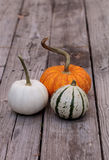 White Casper pumpkin next to an orange pumpkin and green and white gourd Stock Image