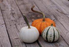 White Casper pumpkin next to an orange pumpkin and green and white gourd Stock Photo