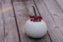 White Casper pumpkin with red berries Royalty Free Stock Photos