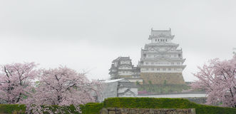 The White Castle Himeji Castle with cherry blossom blooming Royalty Free Stock Images