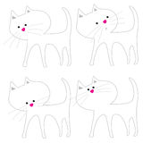 White Cat Acting Cute Royalty Free Stock Images