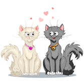 White cat and a black cat Royalty Free Stock Photos